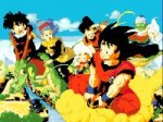 dragon ball 170 virt.JPG
